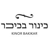 כינור בכיכר – ירושלים