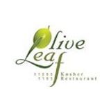 oliveleaf-logo